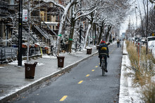 Biker Commuting In Montreal, Q...