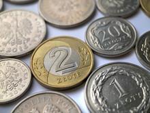 Polish Zloty Coins On White Ba...