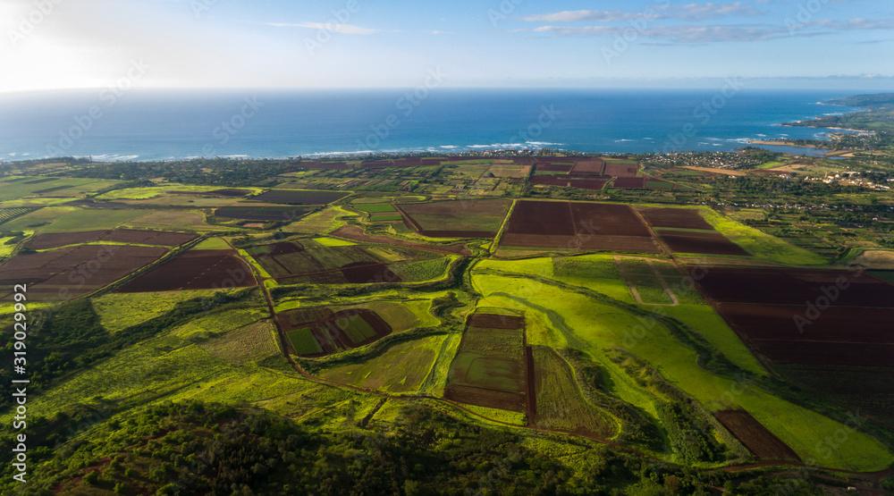 Obraz Aerial view of farmland along the coast of the north shore of Oahu Hawaii fototapeta, plakat