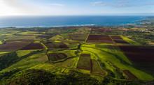 Aerial View Of Farmland Along ...