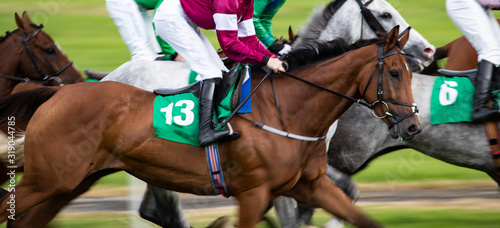 Fotografía Horse racing action, close up on galloping race horses, panning motion blur effe