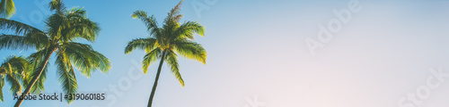 Summer beach background palm trees against blue sky banner panorama, tropical Caribbean travel destination Fototapeta