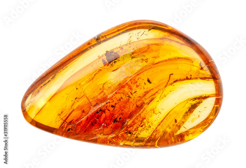 Photo polished Amber gemstone with inclusions isolated