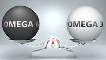 Omega 6 And Omega 3 In Balance...