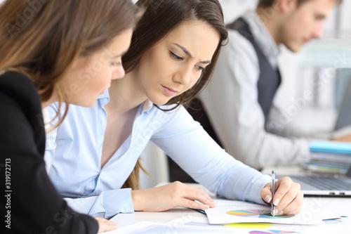 Serious businesswomen working together - 319172713