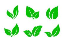 Set Of Green Leaves Iconsset O...