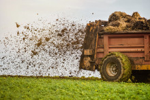 Farmer Spreading Manure In Fields In Autumn