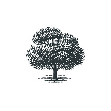 Engraved Tree. Vector Illustra...
