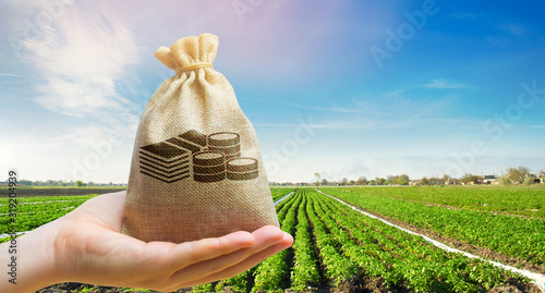 Money bag on the background of agricultural crops in the hand of the farmer Canvas Print