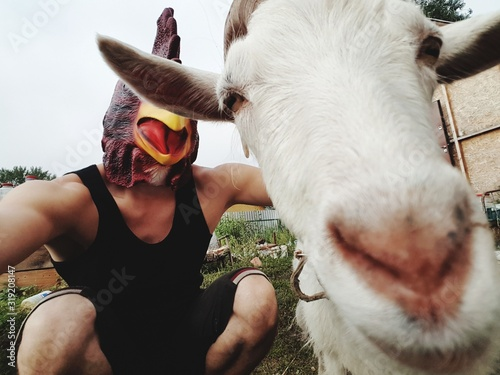 Fototapeta Low Angle View Of Man Wearing Mask By Sheep In Farm
