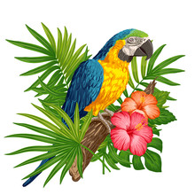 Parrot Macaw With Tropical Pla...