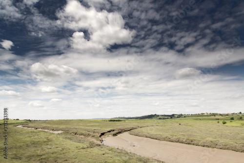 Fotografia, Obraz grean marshland landscape