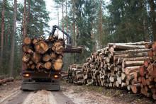 Logging Truck Loading Logs In ...