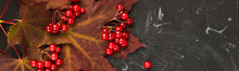 Banner Of Autumn Background Wi...
