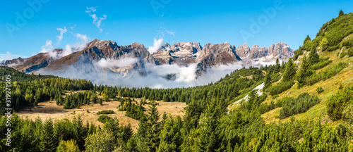 Beautiful forest park with Brenta mountain range in the background, Dolomites (I Fototapet