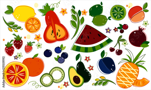 hand drawn fruits collection Wallpaper Mural