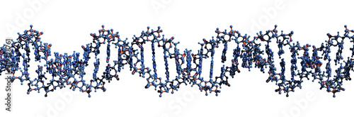 Obraz 3D image of DNA macromolecule skeletal formula - molecular chemical structure of  deoxyribonucleic acid double helix isolated on white background, - fototapety do salonu