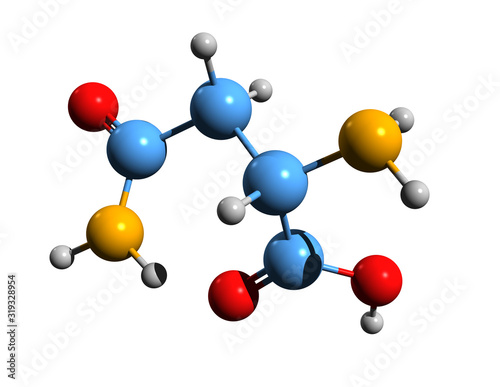 Photo 3D image of asparagine skeletal formula - molecular chemical structure of aminoc