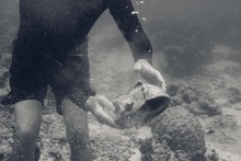 Man Holding Large Shell Underwater With Murky Sea Water
