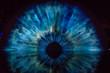 eye shape art structure