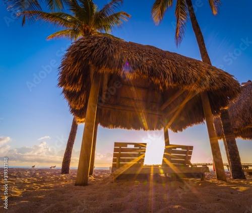 tropical beach vacation sea palm ocean sand island sky blue aquatic nature miami florida cuba eden sun relax