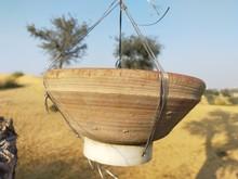 Drinking Water Pot Of Birds In...