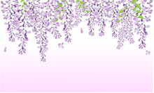 Wisteria Purple Flower