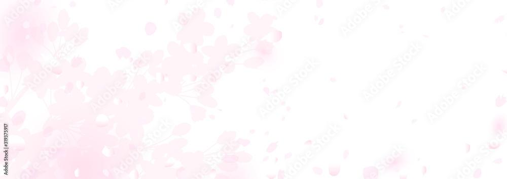 Fototapeta ふわふわ 幻想的な桜