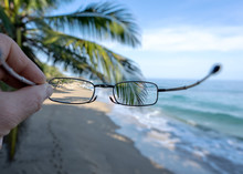 Corrective Glasses. View Of Tr...