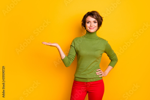 Portrait of cheerful positive girl promoter hold hand show adverts promotion pre Canvas Print