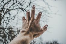 Male Left Hand Reaching For Da...
