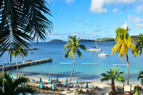 Frenchman's cove, St. Thomas, United States Virgin Islands, Caribbean Sea Coastline, Vacation Destination, Beach With Palm Trees, Tropical Travel, Scenic Waterfront