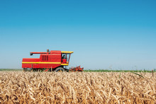 Combine Harvesting In A Field ...