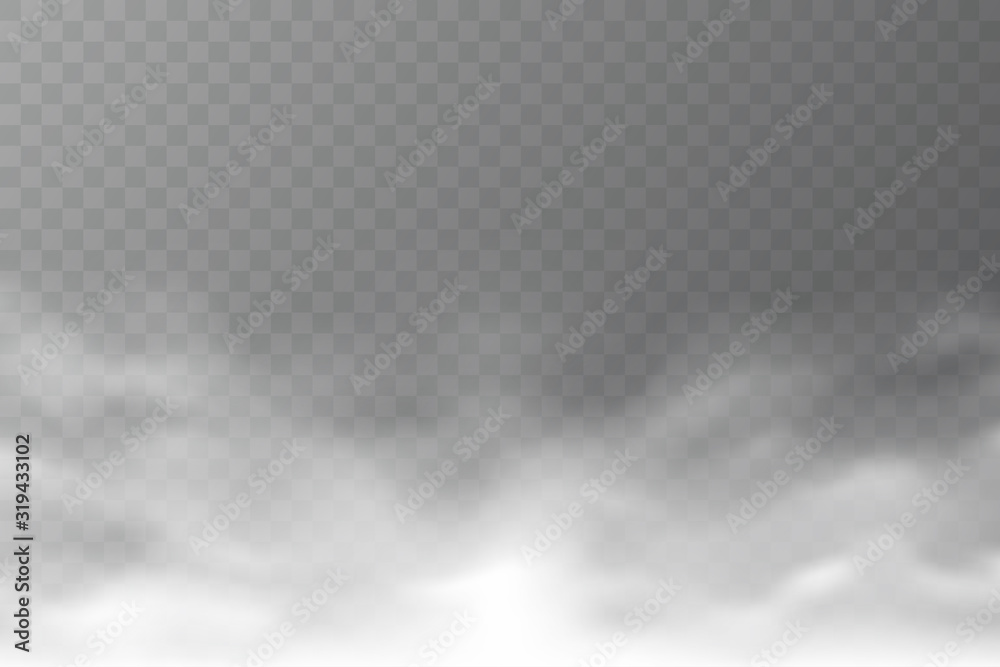 Fototapeta Vector smoke cloud isolated on transparent background. Realistic dense fog. Abstract steam effect for your design. White haze. Vector illustration.