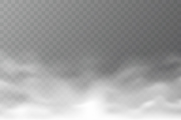 Vector smoke cloud isolated on transparent background. Realistic dense fog. Abstract steam effect for your design. White haze. Vector illustration.