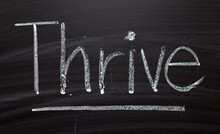 The Word Thrive Written By Han...