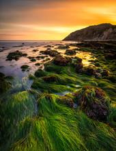 Malibu, California Big Dume Beach Orange Sunset With Blue And Purple Water And Green Seaweed Around The Tidepools And Rocks