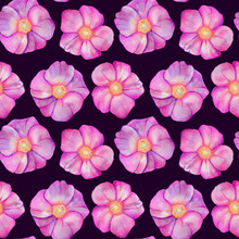 Seamless Pattern With Rose Hips.