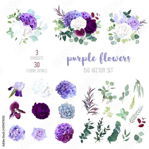 Cuadros en Lienzo Dark purple garden rose, plum orchid, white and violet rose, lilac hydrangea