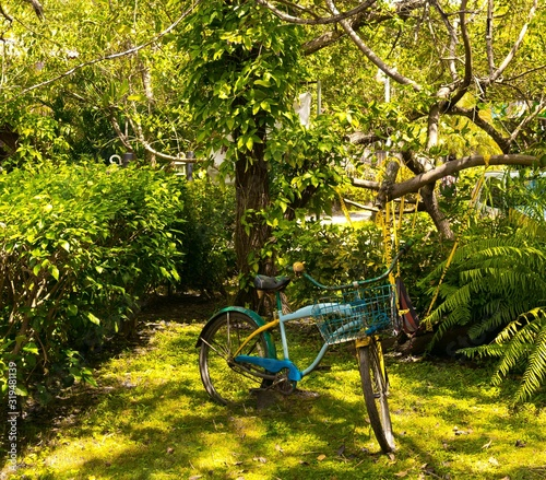 Bicicleta de colores en un jardín Canvas Print