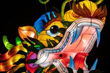 Dragon Chinese Lantern Show Color Art Night Lights Kiev Ukraine March 2019