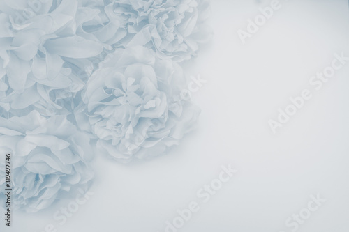 Fotografía Beautiful abstract color purple and blue flowers on white background and blue fl