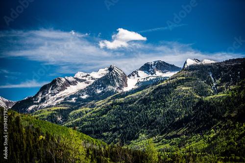 Obraz na plátně Mountain scene in spring