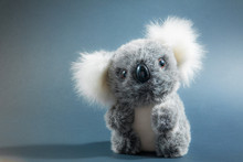 Toy Grey Fur Koala Bear Baby Portrait On A Dark Background
