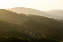 Golden Hills Are Illuminated A...