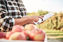 Fruit Grower Using Digital Tab...