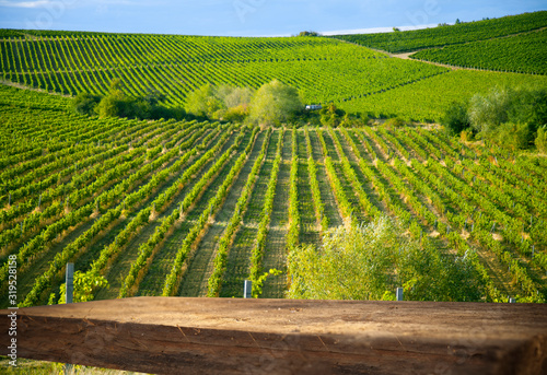 Obraz Nature background with vineyard in autumn harvest. Landscape of vineyards in Tuscany. Chianti region in the summer season. Italy. An empty wooden table can be used to showcase or assemble your goods. - fototapety do salonu