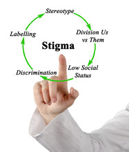 Components Of Cycle Of Stigma