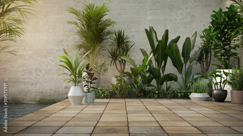 Stampa su Tela Concrete wall and Plant in pot on stone flooring tile, background
