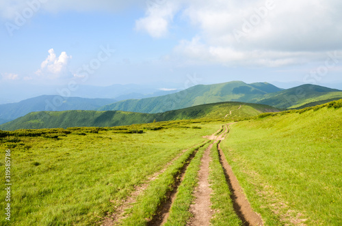 Fototapeta Beautiful landscape view of road in green mountains with cloudy sky, Carpathians, Ukraine, obraz